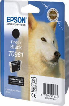 C13T09614010 Картридж Epson для R2880 (Photo Black) (cons ink)