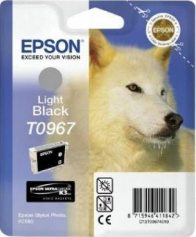 C13T09674010 Картридж Epson для R2880 (Light Black) (cons ink)